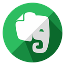 online, Page, internet, document, Evernote, Notes, web MediumSeaGreen icon