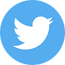 Logo, twitter, media, network, Circle, Social, share CornflowerBlue icon