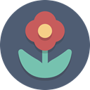 nature, plant, Flower DimGray icon