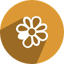 free, media, network, Social, icq Goldenrod icon