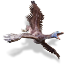 archaeopteryx Black icon
