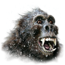 yeti DarkSlateGray icon