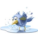 Sn, pool, poolbird, Animal, Social, twitter, bird, water, tweet, social network Black icon