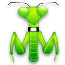 Animal, insect, mantis, bug Black icon
