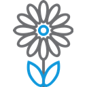 decoration, garden, blossom, plant, Flower DimGray icon