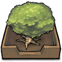 Tree, inbox DimGray icon