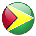 Country, flag, Guyana SeaGreen icon