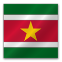 surinam DarkGreen icon