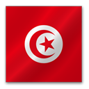 Tunisia Firebrick icon