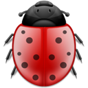 bug, insect, ladybird, Animal Black icon