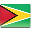 flag, Guyana, Country MediumSeaGreen icon