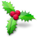 holly, christmas Black icon