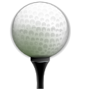 neverputt DarkGray icon