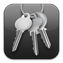 Access, keychain DarkSlateGray icon