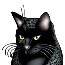 Cat, Animal, Black Black icon