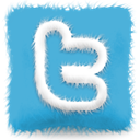 Sn, twitter, furry, Social, Cushion, social network MediumTurquoise icon