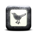 Sn, square, Social, bird, twitter, social network, Animal Black icon