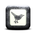 Sn, Social, square, twitter, social network, Animal, bird Black icon