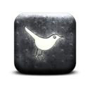 bird, Sn, Social, social network, twitter, Animal Black icon