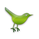 twitter, Social, Sn, Animal, social network, bird Black icon