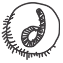 dreamweaver DarkSlateGray icon