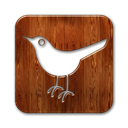 Sn, bird, Social, twitter, square, Animal, social network SaddleBrown icon