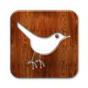Animal, Social, twitter, Sn, social network, bird, square SaddleBrown icon