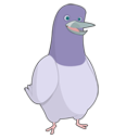 Roger, bird, Social, Sn, twitter, Animal, social network DarkSlateGray icon
