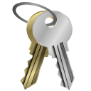 password Silver icon