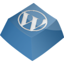 Wordpress SteelBlue icon