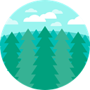 Tree, landscape, spruce, nature, Pine DarkCyan icon