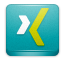 Xing LightSeaGreen icon