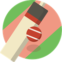Game, Ball, Team Sports, sports, Cricket, bat DarkSalmon icon