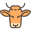 horns, cow, Frontal View, Animal, head, Front, Face, Small Horns, Animals Black icon