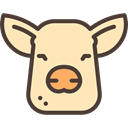 Frontal View, Animal, head, Animals, Face, pig Moccasin icon