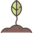 grow, Leaf, nature, Plant Leaf, plant, Growing Black icon