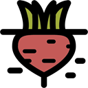 food, Beet, diet, Healthy Food, vegan, vegetable, vegetarian Black icon