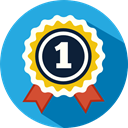 medal, Certification, Quality, winner, award DodgerBlue icon