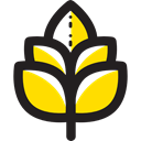 Cereal, Sprig, Barley, food, Grain Black icon