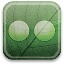 flickr, green, eco DarkSeaGreen icon