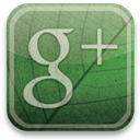 plus, green, google, eco DarkSlateGray icon