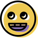 smiling, interface, Emotion, smiley, feelings, Emoticon, people, happy, Face SandyBrown icon