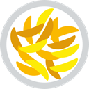 fried, food, Fry, Potatoes, junk food LightGray icon