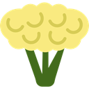 food, healthy, vegetarian, Cauliflower, vegan Khaki icon