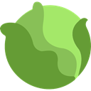 vegetarian, Cabbage, food, Cucumbers, Fruit, Healthy Food, organic, diet OliveDrab icon