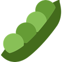 Healthy Food, organic, Beans, food, vegan, vegetarian DarkOliveGreen icon