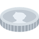 coin, Money, Business, Cash, Currency Silver icon