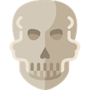 Anatomy, dangerous, skull, Poisonous, Dead, signs Silver icon