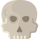 Dead, skull, signs, dangerous, Anatomy, medical, Poisonous Silver icon