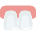 mouth, Dentist, dental, Teeth, medical Lavender icon